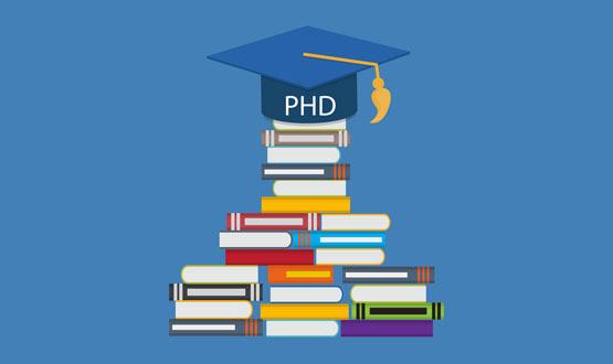 Sister Nivedita University phd course